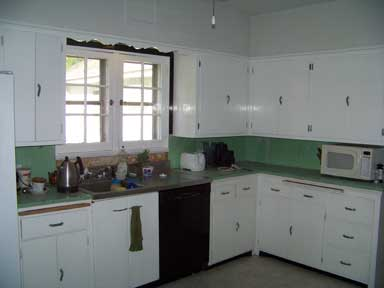 Surviving a Kitchen Remodel, Week One