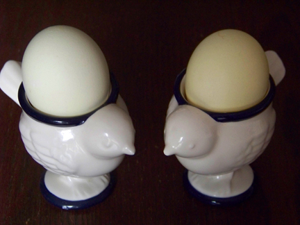Yellow Natural Egg Dye Results