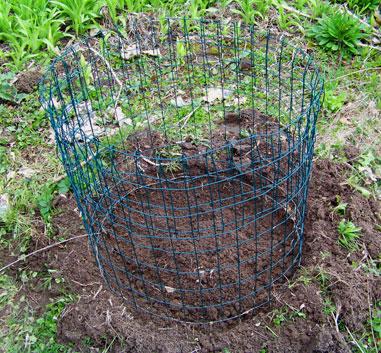 Basic Potato Cage
