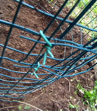 Potato Cage Ties