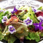 Ginger Violet Salad