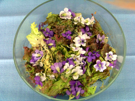 Violet Salad Large