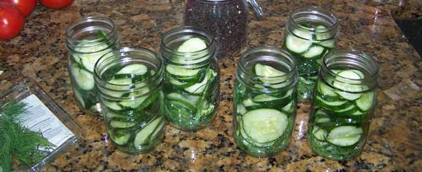 From Cucumber to Hamburger Dill