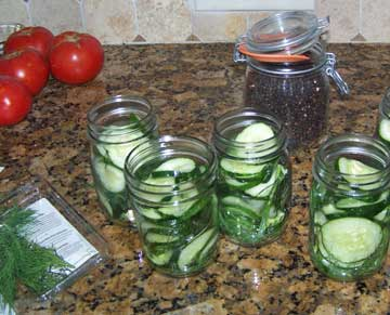 Fill Pickle Jars