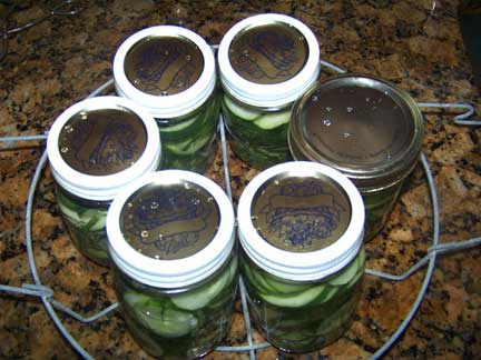 Pickles in Canning Rack