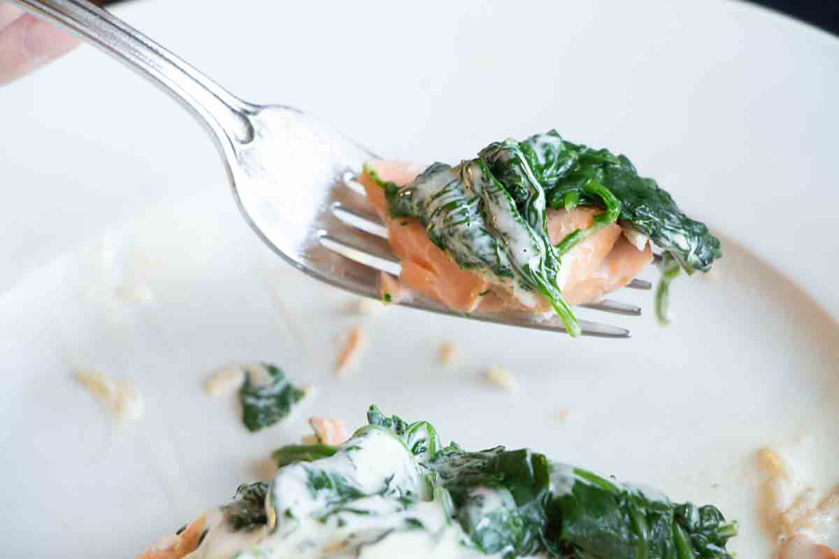 Bite of salmon and spinach