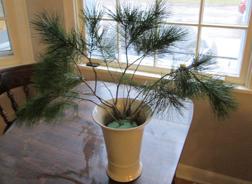 pine-start
