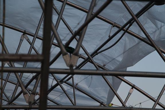 Greenhouse-8a