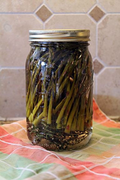 Jar of Pickled Asparagus
