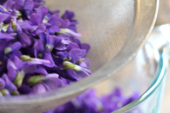 violet-jelly-rinse-flowers
