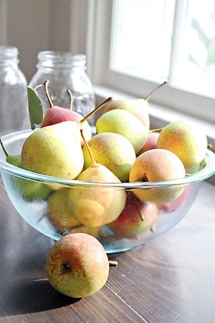 Pears in window