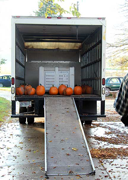 Pumpkins on truck
