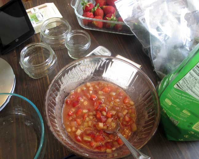 Strawberry Rhubarb Shrub