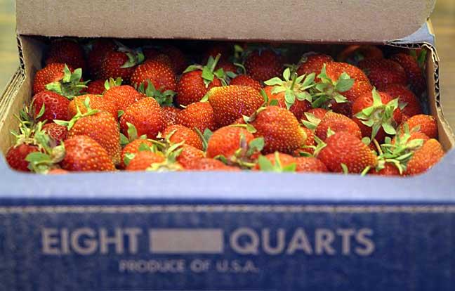 strawberry-case