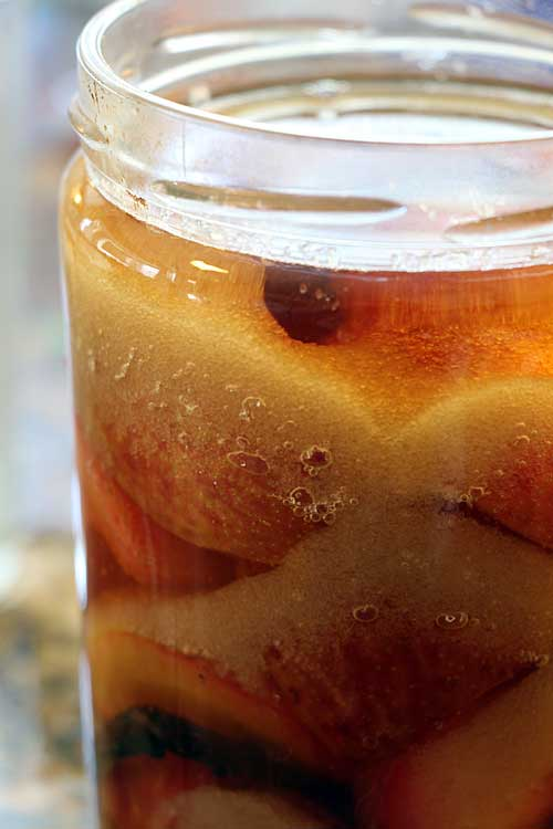 Boozy Fruit:  The Oldest Preserves (Brandied Plums)
