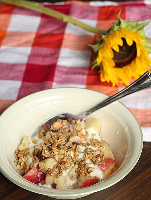 Yogurt and granola and sunflower