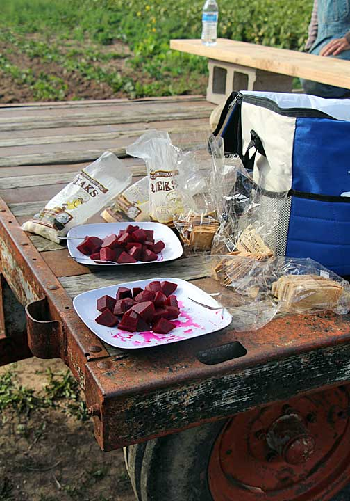 cheese curds, pickles beets and local artisan crackers