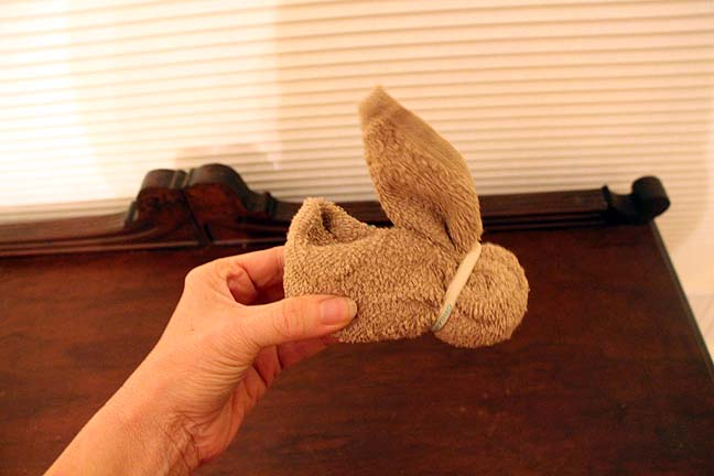 Washcloth BunniesIMG_9570