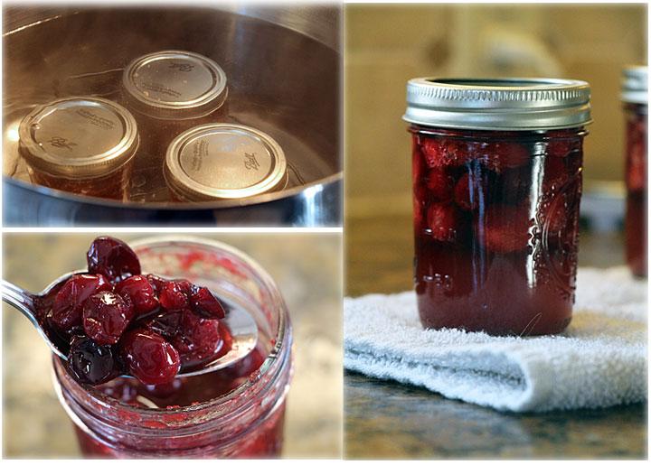 Picked Cranberries