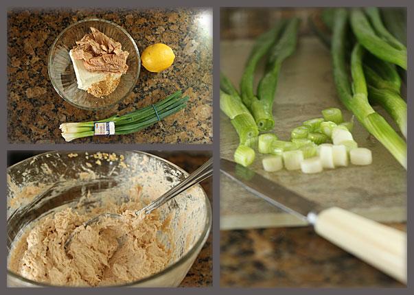Preparing Salmon Spread Appetizer