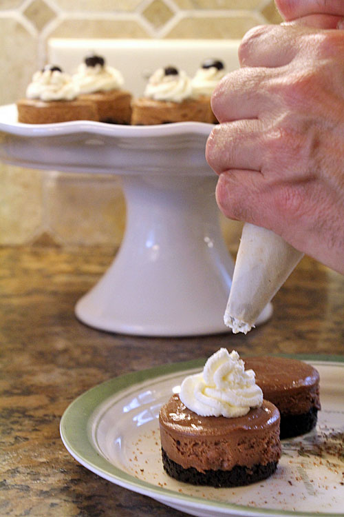 Piping Whipped Cream Rosette onto Mini Mocha Cheesecake