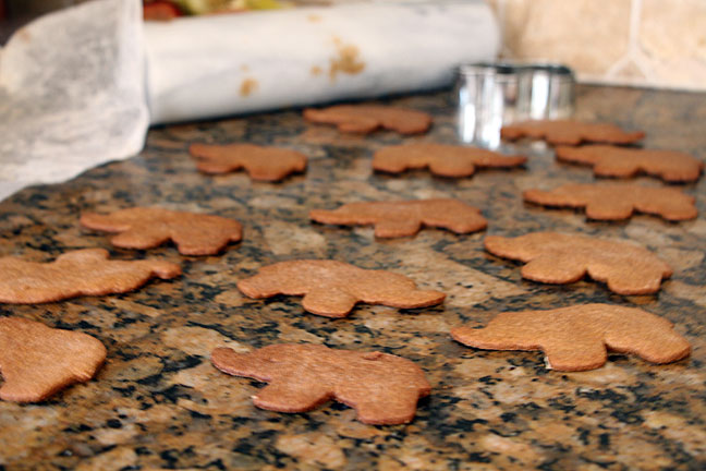 elephant-cookes-on-counter