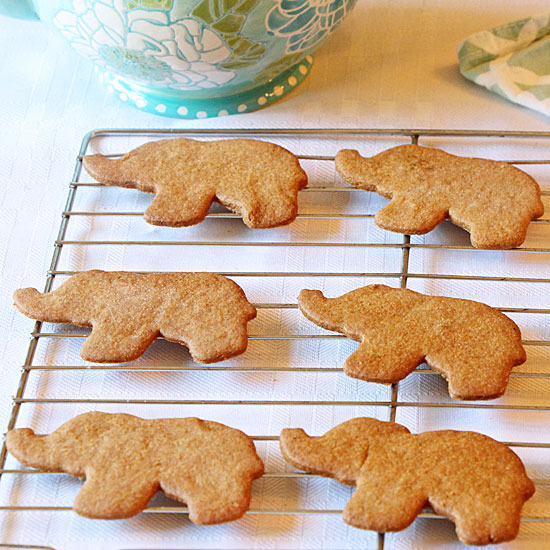 elephant-cookies-sq