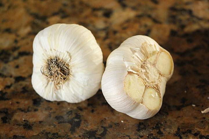 Garlic, ready to roast