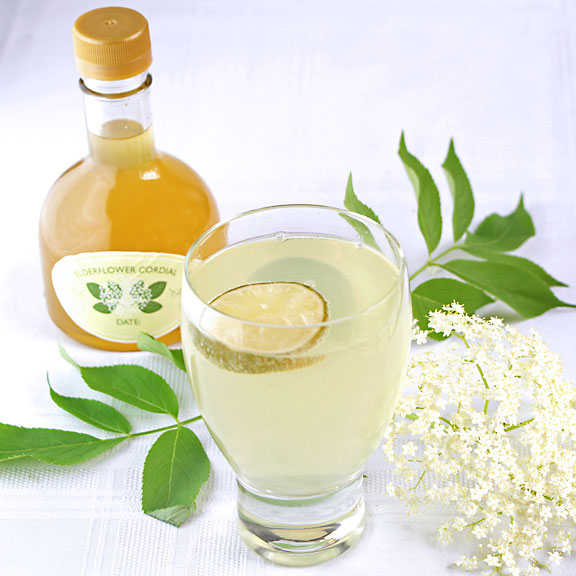 Elderflower Cordial (Elderflower Syrup)