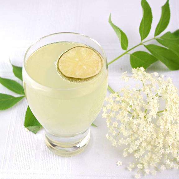 Elderflower cordial with lime