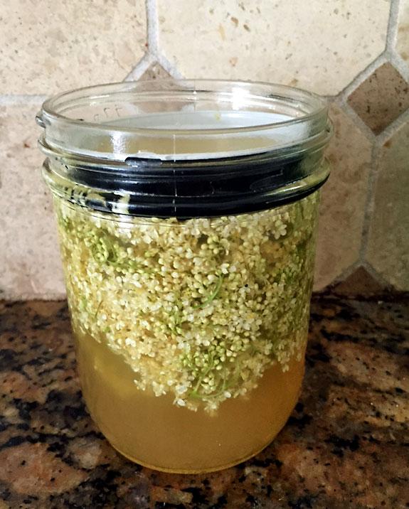 Steep elderflower in simple syrup