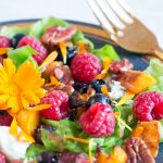 Fall Colors Raspberry Salad Closeup
