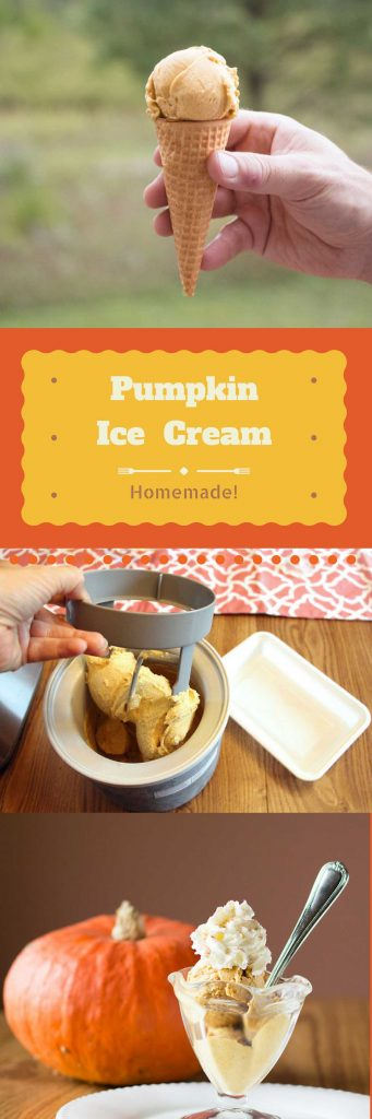 All Natural Homemade Pumpkin Ice Cream. Mmmm!