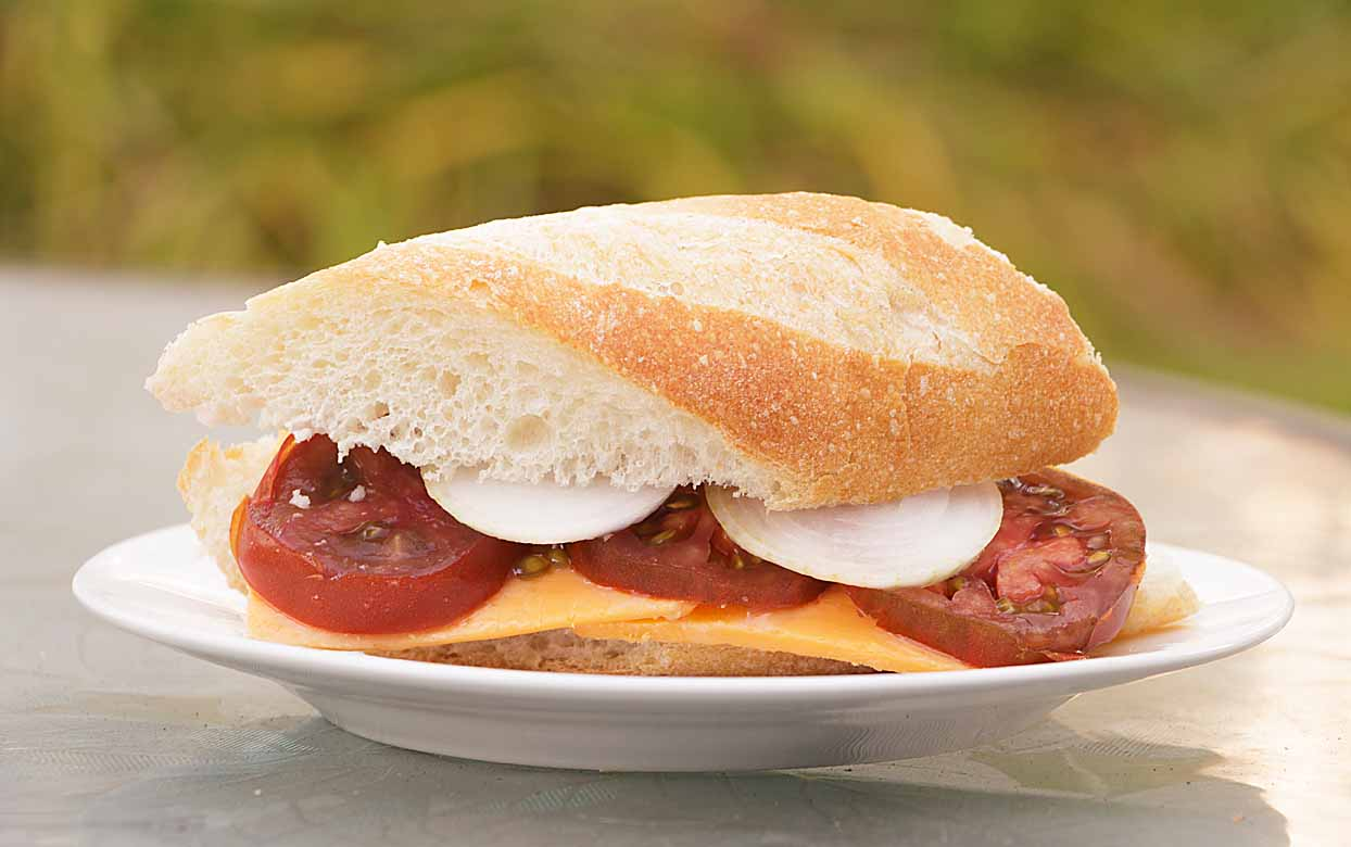 You will marvel at the amount of flavor a simple mix of ingredients can bring to a Tomato Cheese Onion sandwich. Can't beat easy & delicious!