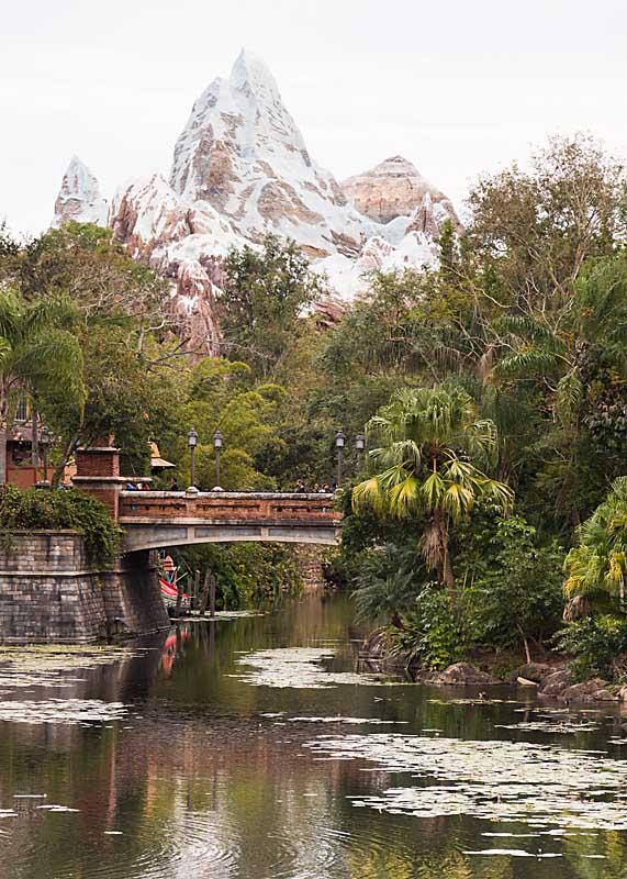 The Exotic Beauty of Disney's Animal Kingdom