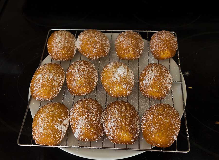 making madeleines