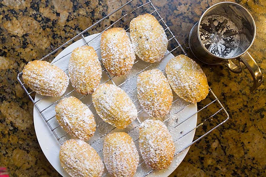 Lavender Vanilla Madeleines are tiny, scallop-shaped dessert cakes that are almost cookie-like—small, light and portable with a slight crunch. Take some to go or serve with tea or as a light dessert.
