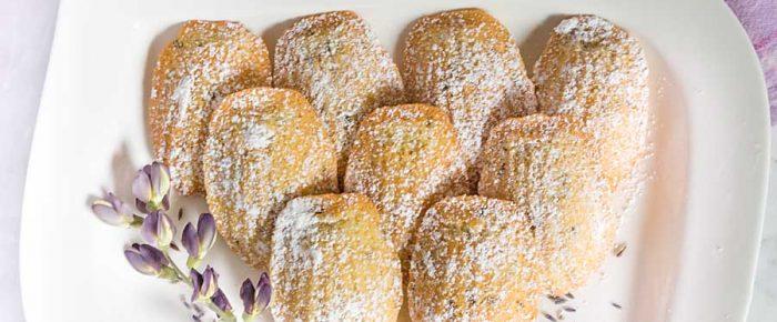 Lavender Vanilla Madeleines