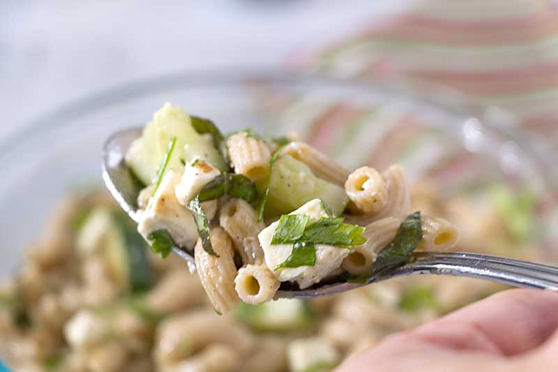 With the juicy crunch of cucumbers and the tangy taste of lemon and herbs, this Lemon Cucumber Pasta Salad is fresh and unique!