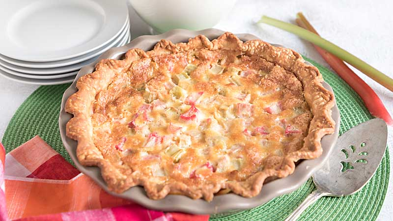 With a creamy sweet custard topped with tart rosy rhubarb, rhubarb custard pie is a super easy and special dessert treat!