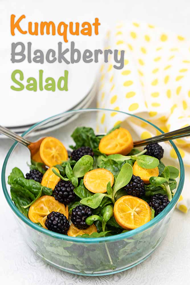 Slightly sweet and colorful, this kumquat blackberry salad is simple, fresh and nutritious. Not to mention cheery and tasty--eat a rainbow!