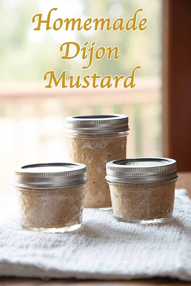 Good in salad dressing, sauces, sandwich spreads and more, Homemade Dijon Mustard is fun and easy -- the workhorse of prepared mustard.