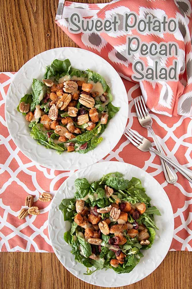 Slightly sweet, nutty and rich this Pecan Sweet Potato Cranberry Salad is perfect for fall. Or anytime you want a healthy fun salad.