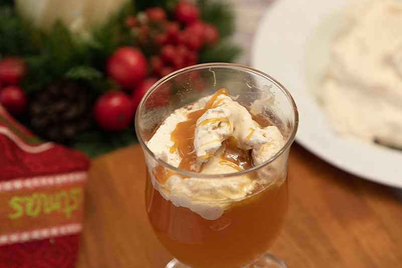 Sweet, spicy and warming, there is nothing like a Caramel Apple Hot Toddy to warm up the season. With brandy or without!